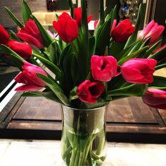 Spring flowers! #spring #tulips