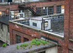 industrial rooftops