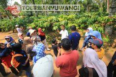 Hasil gambar untuk kampong kopi lerek gombengsari Tours, Nature, Naturaleza, Nature Illustration, Off Grid, Natural