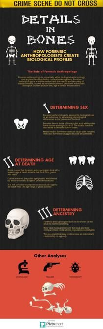 Forensic Anthropology Infographic! | Piktochart Infographic Editor