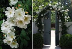 curb-appeal-roses-arch-fence-gate-gardenista