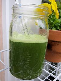 The benefits of juicing - Cherie Calbom, The Juice Lady