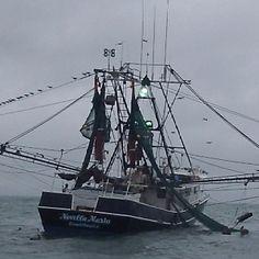 171 Best South Carolina Coast Images Pawleys Island South Carolina South Carolina Coast