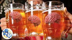 How alcohol gets you drunk #beer #craftbeer #party #beerporn #instabeer #beerstagram #beergeek #beergasm #drinklocal #beertography