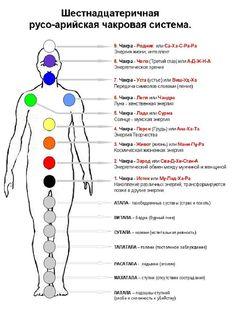 Medical Astrology, Homeopathy Medicine, Alchemy Symbols, Body Anatomy, Best Eyebrow Products, Chakra Healing, Meaningful Tattoos, Yoga Meditation, Sacred Geometry
