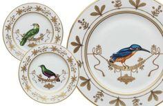 voliere richard ginori bird plates - Google Search