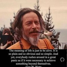 via Alan Watts . via Alan Watts . Spiritual Quotes, Wisdom Quotes, Me Quotes, Quotes To Live By, Motivational Quotes, Inspirational Quotes, Brave Quotes, Alan Watts, Just Be Happy