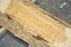 A beautiful Bosse log from West Africa. The heart wood is a gorgeous gold to sienna in color, while the sap is a stunning white. Heavy pomelle/quilt figure weaves through most of the log. ~ Hearne Hardwoods Inc.