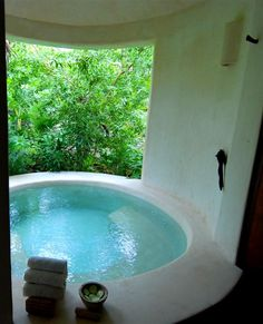 Plunge Pool at Esencia (Riviera Maya)....the best spa ever!