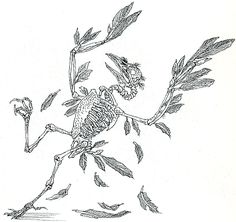 illustratie