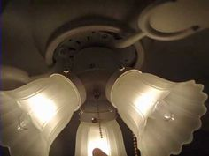 Ceiling Fans In My House   YouTube