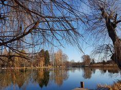 Tavaszi varázslat januárban - Szombathely, Csónakázótó: a kedvenc kiránduló hely a januári napsütésben rengeteg embert vonz a szabadba https://balkonada.hu/tavaszi-varazslat/