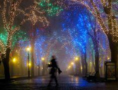 lights lights lights..