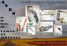 Torre de Juan Abad - Exposición de dibujos a tinta y lápiz de color - Del 1 al 31 de Agosto de 2016 - Casa de Quevedo