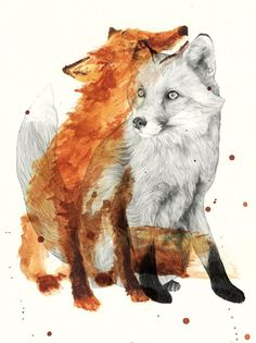 Illustration - illustration - Foxes by Jamie Mitchell www. illustration : – Picture : – Description Foxes by Jamie Mitchell www.creativeboysc… -Read More – Art Et Illustration, Illustrations, Art Fox, Graffiti Artwork, Motifs Animal, Fox Tattoo, Spirit Animal, Picasso, Watercolor Art