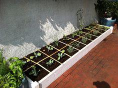 More square foot gardening