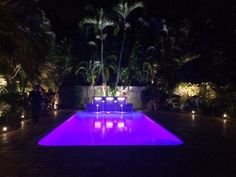 Pool, led pool, Florida pool, rectangle pool, water feature in pool, glass pool tile, landscape lighting,
