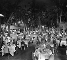 Coconut Grove Nightclub was one of Hollywood finest nightclubs