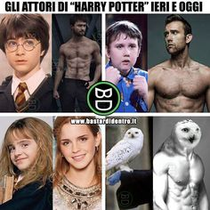 Harry Potter actors before and after Harry Potter Tumblr, Harry Potter Anime, La Saga Harry Potter, Harry Potter Actors, Harry Potter Jokes, Harry Potter Universal, Harry Potter Fandom, Funny Images, Funny Memes