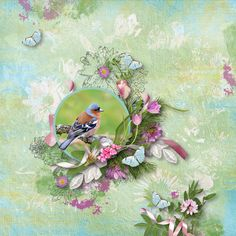 digital scrapbooking Suddenly (full kit) by Simplette is a part of a springly collection about nature and flowers All Paper, Spring Is Here, Outdoor Life, Suddenly, Digital Scrapbooking, Kit, Creative, Layouts, Flowers