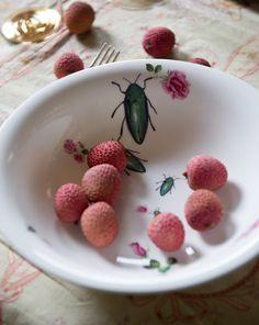Lou Rota Bug Bowl