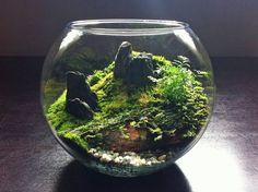 Moss + Stone: