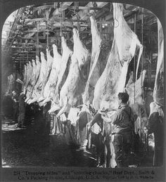 Chicago - Meat Packing Industry: dropping hides and splitting chucks, beef dept.'s Packing House Vintage Pictures, More Pictures, Meat Packers, Showing Livestock, Chicago River, A Moment In Time, Meat Lovers, Packing, Industrial