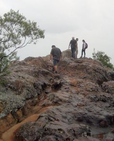 Last section to the summit of Ngungun
