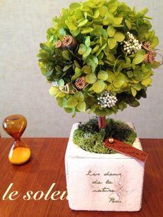 2色のプリザーブドあじさいのポイントに、シャーリーポピー、ライスフラワー、スパニッシュモスを使い、ナチュラルでどこか力強ささえ感じるトピアリーになりました。日... ハンドメイド、手作り、手仕事品の通販・販売・購入ならCreema。 Preserved Flowers, Topiary Trees, How To Preserve Flowers, Flower Boxes, Ohana, Dried Flowers, Creema, Preserves, Floral Arrangements