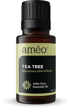 """TEA TREE 