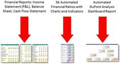 Example Of A Financial Report Bull Whip Effect Definitionin Small Business Operations  Tools .