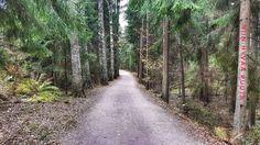 #europe #instahelsinki #helsinki #travel #traveler #traveling #travelgram #finnishboy #landscape #landscape_lovers #finnish #travelphotography #instatravel #instapic #instagramers #visithelsinki #f4f #cool #nature #hiking #follow #followme #sport #fashion #love #nature #instarunners #trailrunning #gym #fitness