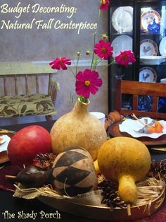 Budget Decor: Natural Fall Centerpiece #tablescapes #centerpieces #budgetdecorating #gourds #DIY