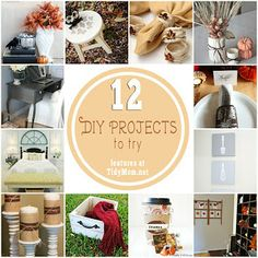 Ideal DIY Projects