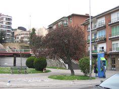 Plaza Villamonte, Algorta, 2004 (Cedida por Jon Peli Oleaga)