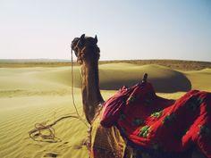 Go on a camel safari in the sand dunes around Jaisalmer