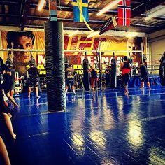 Martial Arts Gym, Fight Gym, Thai Box, Submission Wrestling, Gym Design, Training Center, Dojo, Self Defense, Kickboxing