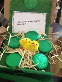 #Parcelgenie Twitter hero, @Unique361, took this artfully arranged pic of her Mint Choc Chicks.