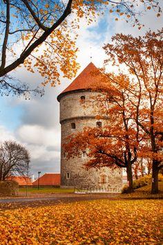 Old Town Tallinn @creativework247