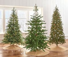 Artificial Christmas Trees - Christmas Trees - The Home Depot Types Of Christmas Trees, Christmas Open House, Gold Christmas Decorations, Christmas 2019, Merry Christmas, Holiday Decor, Xmas Trees, Happy Holidays, Lights