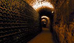 cantine - cellars     #food #wine #italy #veneto #bottle #cell #wine #treviso www.venetoesapori.it/it/search/node/villa%20sandi