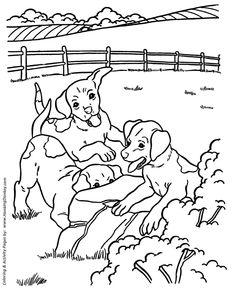 Happy Dog Bath