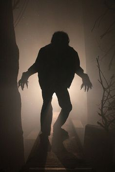 """The 2010 remake of """"The Wolf Man"""" was used as the basis for Halloween Horror Nights house, 2009's """"The Wolfman"""" house."""