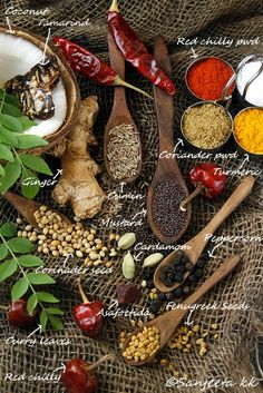 Indian spices and aromatic cooking...some traditional Indian recipes with lentil and spices.  South Indian Sambhar and tangy curry.
