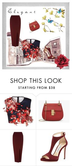 """""""Elegenat outfit"""" by jenkey-cool-fashion ❤ liked on Polyvore featuring Polaroid, Clover Canyon, Miss Selfridge and Jimmy Choo"""