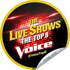 The Voice Season 6: Top 8 (May 5, 2014)