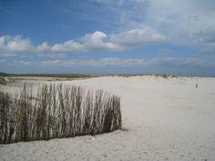 Beach at Schiermonnikoog