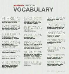 Veterinary Terminology.