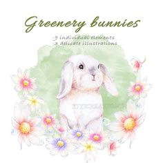 Watercolor Spring Easter Rabbit Clipart, Printable Bunny Illustrations, Floral wreath, Cute little and Greenery flower graphics, Egg basket Rabbit Clipart, Cat Clipart, Kitten Images, Egg Basket, Flower Graphic, Letter Patterns, Forest Friends, How To Make Pillows, Floral Watercolor
