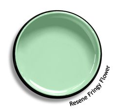 Resene Half Biscotti is a ladylike silky-soft beige with a hint of cameo Paint Color Schemes, Colour Pallette, Color Palate, Paint Colours, Neutral Paint, Neutral Palette, Neutral Colors, House Paint Exterior, Exterior Paint Colors
